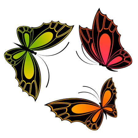 The beautiful butterfly. Stock Vector - 9796829