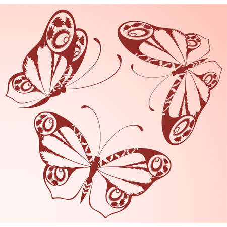 Vector beautiful butterfly Stock Vector - 9869457