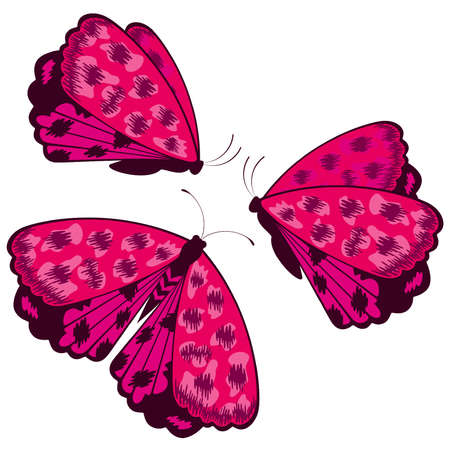 Vector beautiful butterfly Stock Vector - 9869466