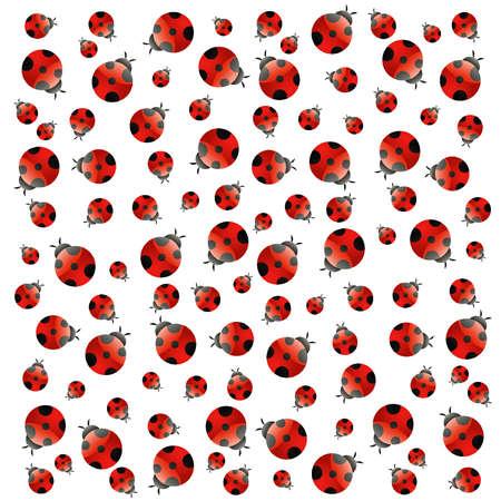 escarabajo: Fondo blanco con peque�as mariquitas. Vector