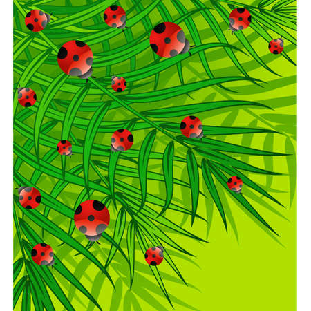 Green background with small ladybug. Vector Vector