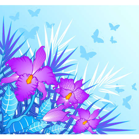 Beautiful violet orchid Vector