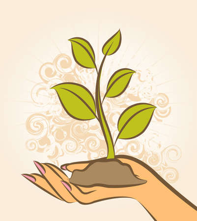 Human hand with a green plant. Stock Photo - 10326986