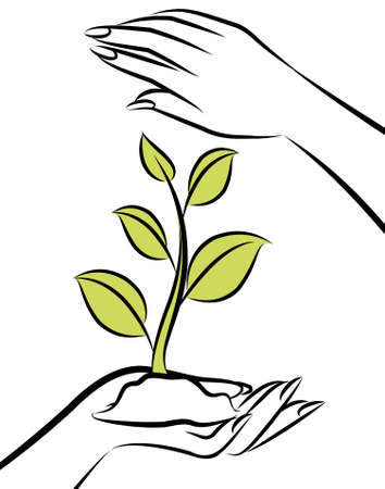 Human hand with a green plant. Stock Photo - 10326973