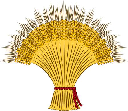 sheaf: sheaf of wheat on a white background