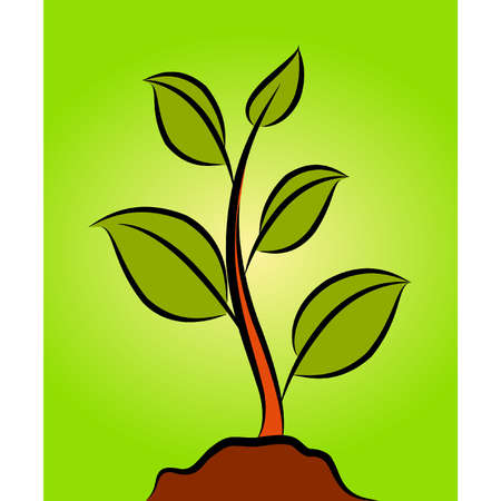 green plant Stock Vector - 10545002