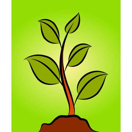 green plant Stock Vector - 10545002