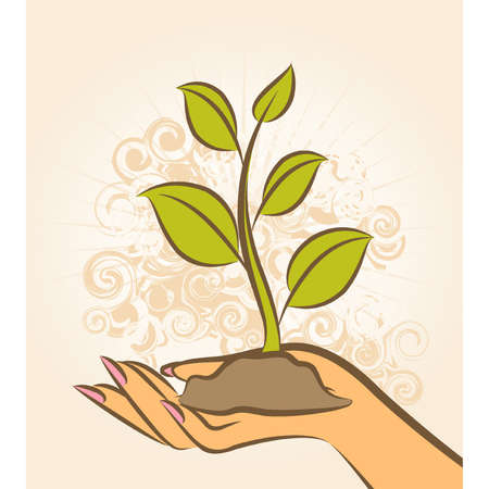 Human hand with a green plant. Vector Stock Vector - 10545460