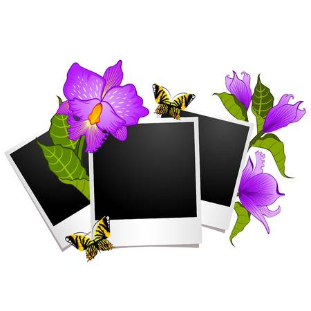 photo frames with flowers and butterflies Vector