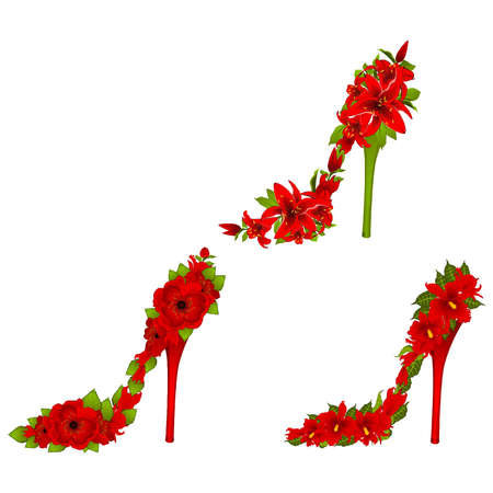 High heel from beautiful flowers. Vector Stock Vector - 10545572