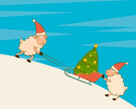 firtree: Cartoon funny sheep heaves up sledges with fir-tree.