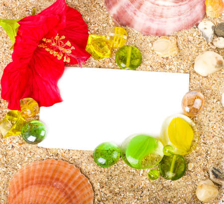 Beautiful exotic shell, stones, crystals and flower with banner add photo