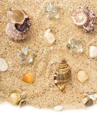 Beautiful exotic shell and crystals on a sand background photo