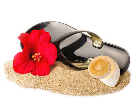 Black flip- flop in the sand with shell and red flower photo