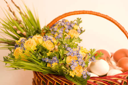 Basket with Easter eggs and spring tulips on white background photo