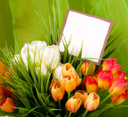 Beautiful spring flowers with banner add photo