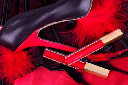 Sexy fashionable shoe and red lipstick Stock Photo - 13253190