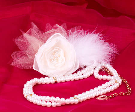 The beautiful bridal rose on red background photo