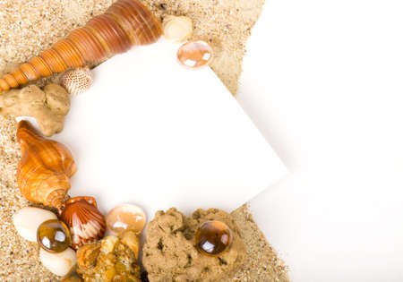 Beautiful sand background with exotic shell Stock Photo - 13585787