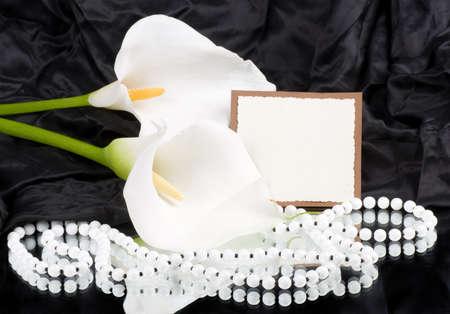 calas blancas: Hermosa callas blanco con la bandera a�adir