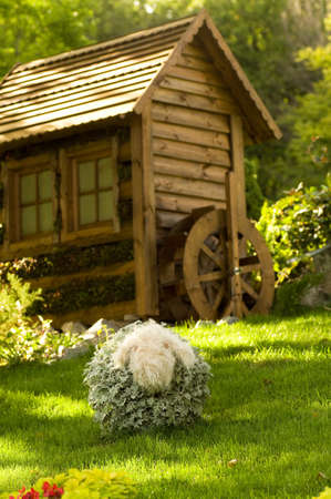 Beautiful rural cottage in summer time  photo