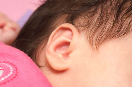 Close up ear of a sleeping baby photo
