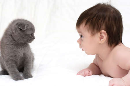 animal finger: cute baby girl with cat pet
