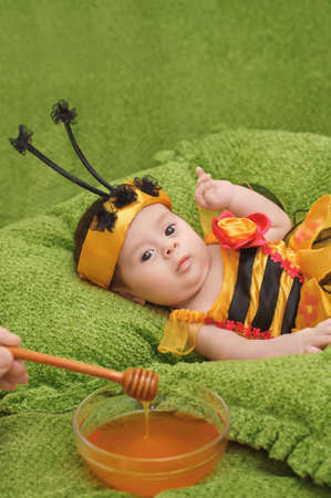 Honey Bee Baby on green background photo