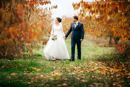 Bride and Groom at Wedding Day walking Outdoors on autumn nature. Bridal couple, Happy Newlywed woman and man embracing in autumn park. Loving wedding couple outdoor. Stock Photo