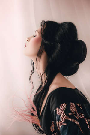 Portrait of a Japanese Geisha woman Reklamní fotografie