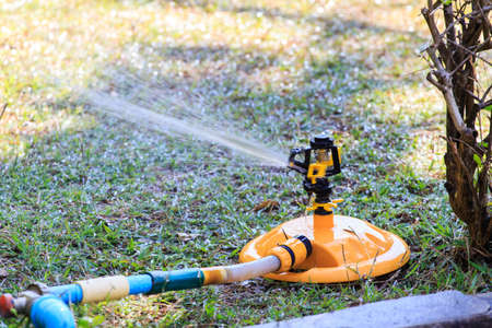 Lawn Sprinkler isolate on background