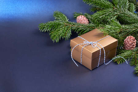 Golden gift box near pine tree branches on trendy classic blue background. Place for the text.