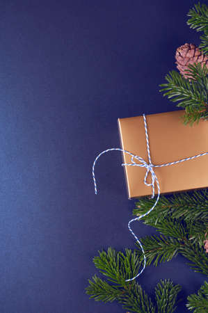 Golden gift box near pine tree branches on trendy classic blue background