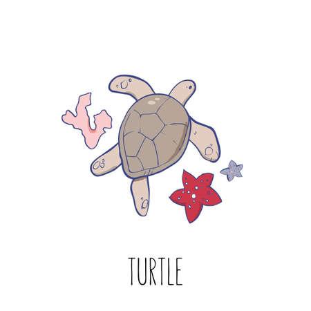 Marine turtles vector illustration. Hand drawn cartoon turtles sticker for t-short, prints