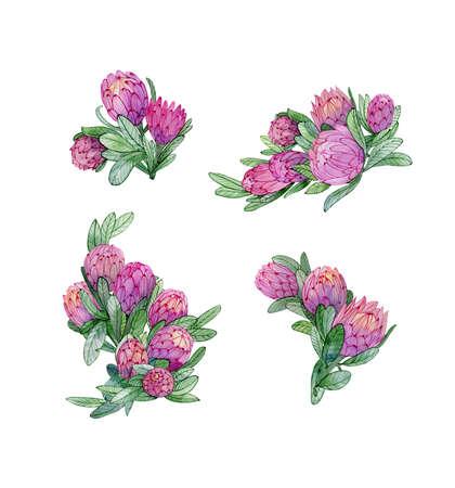 4 composition with protea flowers. Exotic tropical flowers for textile, bridal decoration. Stock fotó