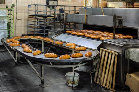freshly baked hot bread loafs on the production line 版權商用圖片