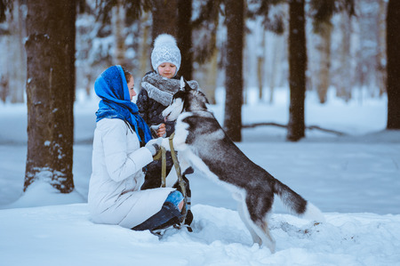 mother and young daughter walking with husky dog in winter forest, Winter fun photo