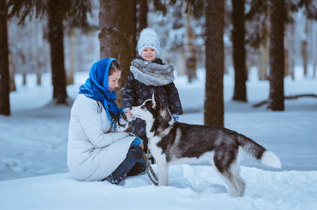 mother and young daughter playing with husky dog, winter time photo