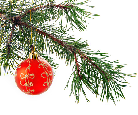 christmas decorations with white background: Festive decorations. Red Christmas ball on white background Stock Photo