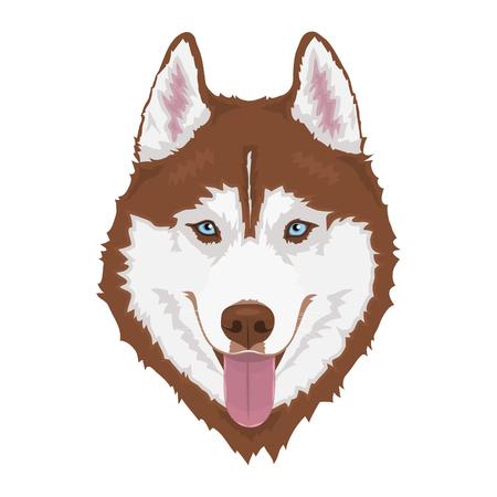 Husky siberiano rojo con ojos azules y sacando la lengua. Retrato de perro dibujado a mano. Ilustración vectorial