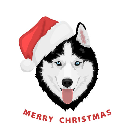 Dog portrait in a red Santas hat. Black and white Siberian husky with blue eyes. Merry Christmas and Happy New Year. The dog is a symbol of 2018. Vector illustration  Illustration