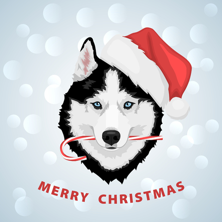Dog portrait in a red Santas hat with candy in mouth. Black and white Siberian husky with blue eyes. Merry Christmas and Happy New Year. The dog is a symbol of 2018. Vector illustration