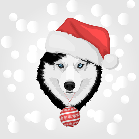 Dog portrait in a red Santas hat with Christmas ball. Black and white Siberian husky with blue eyes. Merry Christmas and Happy New Year. The dog is a symbol of 2018. Vector illustration