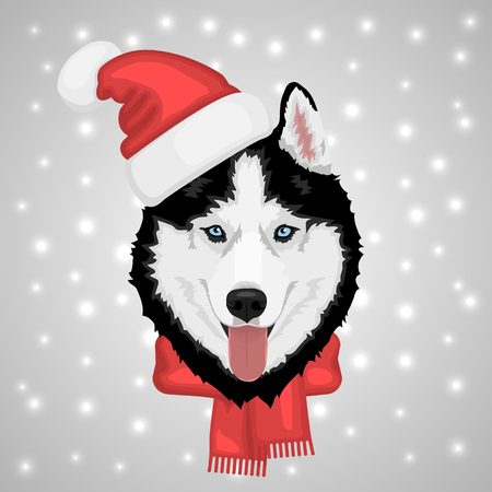 Dog portrait in a red Santa's hat. Black and white Siberian husky with blue eyes. Merry Christmas and Happy New Year. The dog is a symbol of 2018. Vector illustration