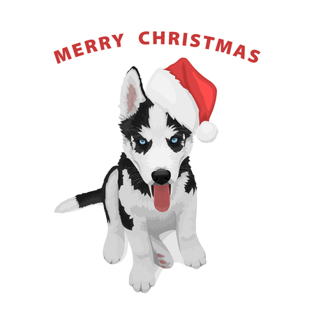 Puppy portrait in a red Santas hat. Black and white Siberian husky with blue eyes. Merry Christmas and Happy New Year. The dog is a symbol of 2018. Vector illustration