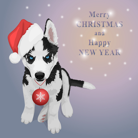 Puppy portrait in a red Santas hat with Christmas ball. Black and white Siberian husky with blue eyes. Christmas and New Year greeting card. The dog is a symbol of 2018. Vector illustration