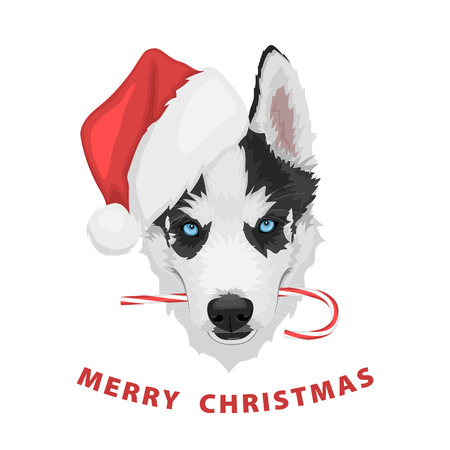 Puppy portrait in a red Santas hat with candy in mouth. Black and white Siberian husky with blue eyes. Merry Christmas and Happy New Year. The dog is a symbol of 2018. Vector illustration