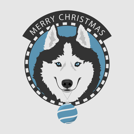 Dog portrait with blue Christmas ball. Black and white Siberian husky with blue eyes. Christmas and New Year greeting card. The dog is a symbol of 2018. Vector illustration