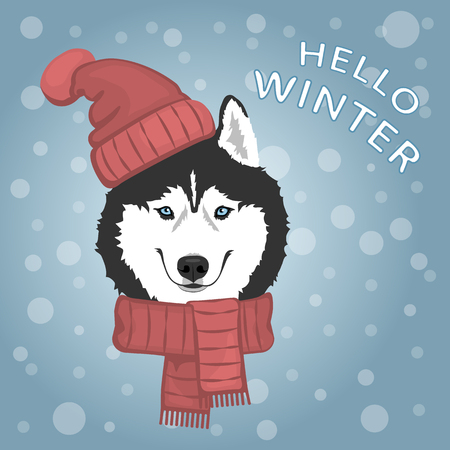 Dog portrait in red hat and scarf. Black and white Siberian husky with blue eyes. The dog is a symbol of 2018. Winter greeting card. Vector illustration