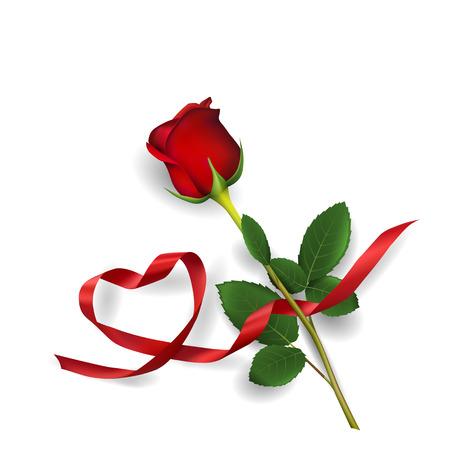 Rosa rossa e cuore fatto di nastro rosso su sfondo bianco.